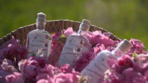 bio rosenwasser in Flasche