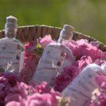 bio rosenwasser Damascena Rose